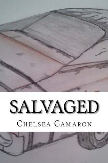 salvaged 17733042