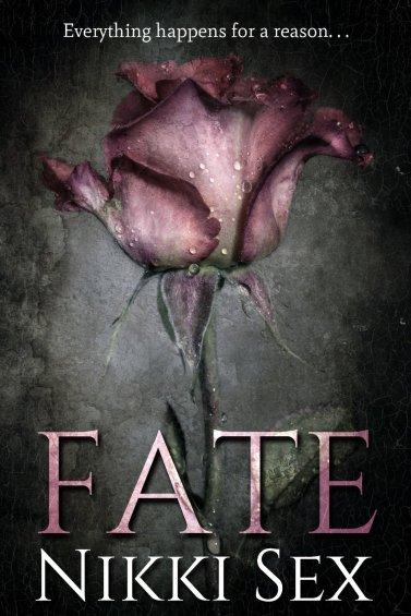 fate 91LB2ektXhL._SL1500_